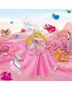 Beautiful Cinderella Digital Printed Photography Backdrop YHA-347