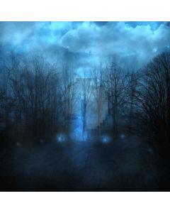 Numerous Trees Digital Printed Photography Backdrop YHA-424