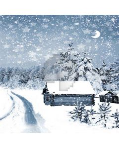 Heavy Snowfall Digital Printed Photography Backdrop YHA-524