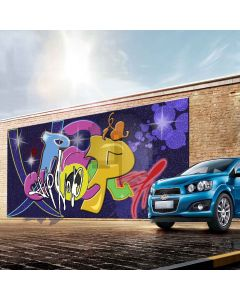 Different Graffiti Digital Printed Photography Backdrop YHA-541