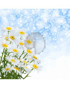 Blooming Flowers Digital Printed Photography Backdrop YHA-551