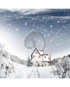 Snowy Sky Digital Printed Photography Backdrop YHA-562