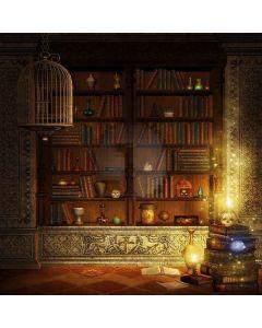 Elegent Bookshelf Digital Printed Photography Backdrop YHB-020