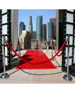 Modern Red Carpet Digital Printed Photography Backdrop YHB-032