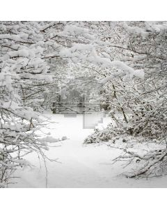Snowy Scene Digital Printed Photography Backdrop YHB-049