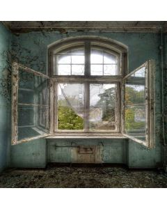 Shabby Interior Digital Printed Photography Backdrop YHB-134