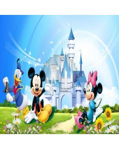 Lovely Castle Digital Printed Photography Backdrop YHB-152