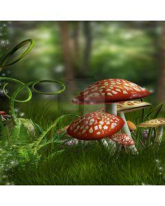 Likable Mushrooms Digital Printed Photography Backdrop YHB-170