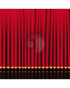Stage Curtain Digital Printed Photography Backdrop YHB-209