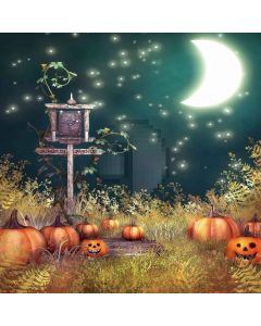 Halloween Night Digital Printed Photography Backdrop YHB-219