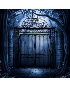 Scary Gate Digital Printed Photography Backdrop YHB-235