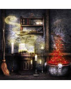 Magic Room Digital Printed Photography Backdrop YHB-251