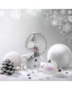 Lovely Snowman Digital Printed Photography Backdrop YHB-279