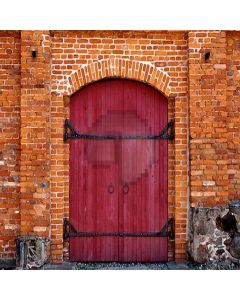 Door With Stone Wall  Computer Printed Photography Backdrop YKY-117