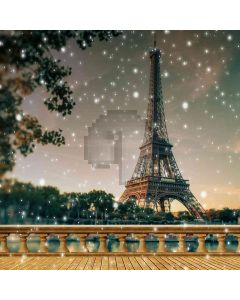 Magnificent Eiffel Tower Computer Printed Photography Backdrop YKY-142