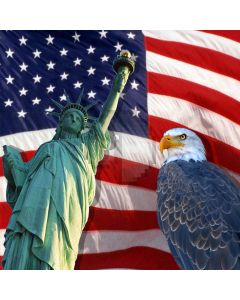 Statue of Liberty Computer Printed Photography Backdrop ZJZ-005