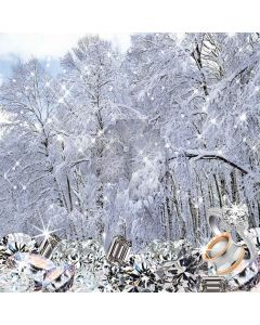 Snow covered woods diamonds Computer Printed Photography Backdrop ZJZ-055