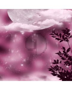 Bright full moon white clouds Computer Printed Photography Backdrop ZJZ-145