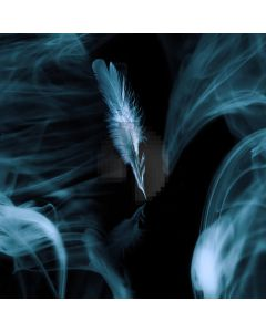 Feathers smoke floc Computer Printed Photography Backdrop ZJZ-197