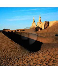 Desert Impression  Computer Printed Photography Backdrop ZJZ-342