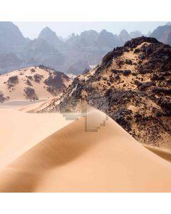 The Desert Computer Printed Photography Backdrop ZJZ-377