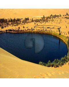 Desert Paradise  Computer Printed Photography Backdrop ZJZ-393