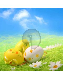 Painted Eggs Computer Printed Photography Backdrop ZJZ-397