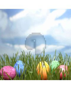 Eggs In The Grass Computer Printed Photography Backdrop ZJZ-398