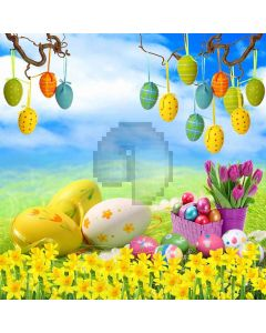 Painted Eggs Computer Printed Photography Backdrop ZJZ-399