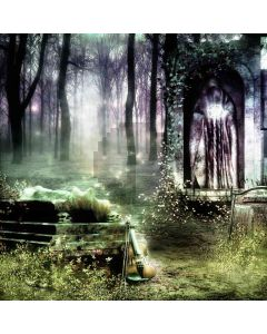 Magic Forest  Computer Printed Photography Backdrop ZJZ-447
