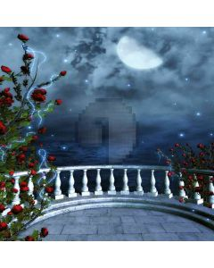 Night With Roses  Computer Printed Photography Backdrop ZJZ-708