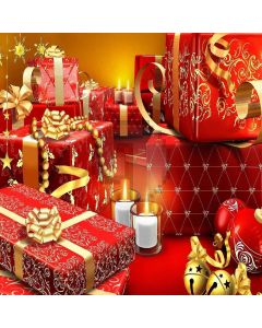 Diverse Gifts Computer Printed Photography Backdrop ZJZ-858