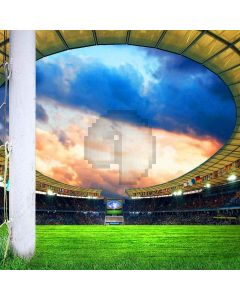 Sports Stadiums Computer Printed Photography Backdrop ZJZ-874