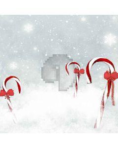 White Snowflakes  Computer Printed Photography Backdrop ZJZ-886