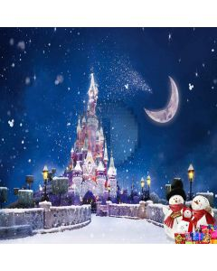 Snow-covered Castle Computer Printed Photography Backdrop ZJZ-895