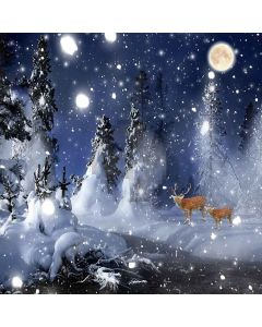 Snowy Night Computer Printed Photography Backdrop ZJZ-903
