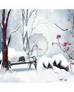 Snow-covered Bench Computer Printed Photography Backdrop ZJZ-910