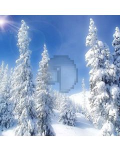 Snow-covered Trees Computer Printed Photography Backdrop ZJZ-912
