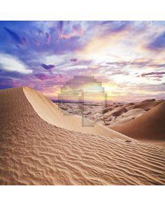 Desolation Desert  Computer Printed Photography Backdrop ZJZ-932
