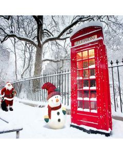 Telephone Booth Computer Printed Photography Backdrop ZJZ-936