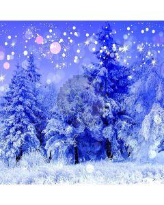 Stunning Snow Scene Computer Printed Photography Backdrop ZJZ-968
