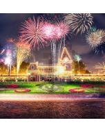 Firework Disneyland Tower Computer Printed Photography Backdrop ABD-858