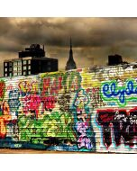Colorful Graffiti  Computer Printed Photography Backdrop DT-LP-0548