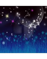Beautiful night sky Computer Printed Photography Backdrop DT-SL-107