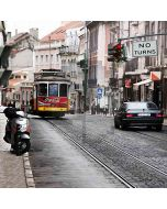 Trail Train On The Street Computer Printed Photography Backdrop HY-CM-3660