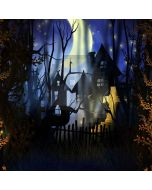 Spooky Night Computer Printed Photography Backdrop LMG-026