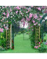 Flowery Door Computer Printed Photography Backdrop LMG-051
