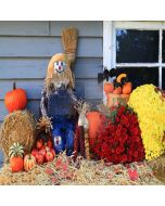 Lovely Scarecrow Computer Printed Photography Backdrop LMG-097
