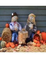 Cute Scarecrows Computer Printed Photography Backdrop LMG-100