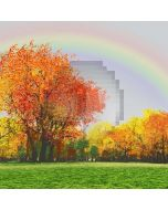 Rainbow In Autumn Computer Printed Photography Backdrop LMG-105